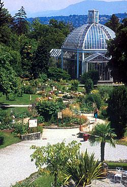 conservatoire et jardin botaniques de la ville de gen ve - Jardin Botanique Geneve